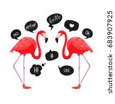 red flamingos with speech... | Shutterstock .eps vector #683907925
