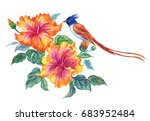 bird of paradise on flowers of... | Shutterstock . vector #683952484