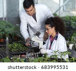 two young engineers working in...   Shutterstock . vector #683995531