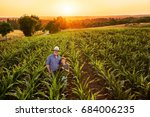 top view. a farmer and his son... | Shutterstock . vector #684006235