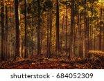 black forrest in germany.... | Shutterstock . vector #684052309