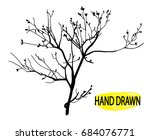Stock vector dry branch tree branch without leaves drawing by hand in vintage style drawing pen 684076771