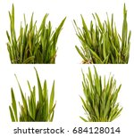 green grass lawn isolated on... | Shutterstock . vector #684128014