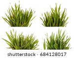 green grass lawn isolated on... | Shutterstock . vector #684128017