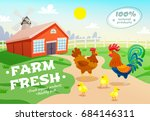 poultry farm healthy organic... | Shutterstock .eps vector #684146311