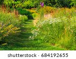 Garden Path Among The Flowers....