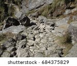 Small photo of Rocky Trail