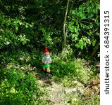Garden Gnome In A Forest ...