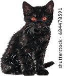 Stock vector cute little cat black cat vector illustration 684478591