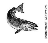 hand drawn salmon. retro sketch ... | Shutterstock .eps vector #684495991