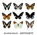 Stock photo high quality of nature butterfly collection set of butterfly isolated on white in water color 684546835