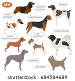 hunting dog breeds set icon... | Shutterstock .eps vector #684584689