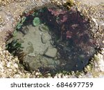 Overhead View Of Tide Pool On...