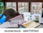Stock photo the cat makes a mess on the desk 684759565