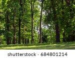 the green lawn in the oak... | Shutterstock . vector #684801214