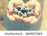 A Handful Of Blue Blueberries...