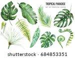watercolor tropical floral... | Shutterstock . vector #684853351