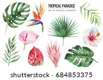 watercolor tropical floral... | Shutterstock . vector #684853375