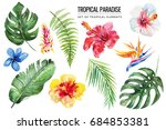 watercolor tropical floral... | Shutterstock . vector #684853381
