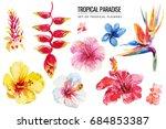 watercolor tropical floral... | Shutterstock . vector #684853387