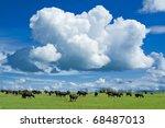 A Huge Cloud Above An African...