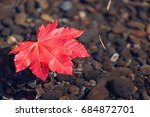 A Single Red Maple Leaf...