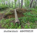 Old Log Across The Ravine....