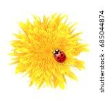 vector illustration of ladybug  ... | Shutterstock .eps vector #685044874