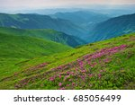 valley among majestic green... | Shutterstock . vector #685056499