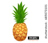vector pineapple. illustration... | Shutterstock .eps vector #685073101