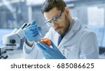 in a modern laboratory food... | Shutterstock . vector #685086625