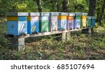 a row of bee hives in the apiary | Shutterstock . vector #685107694