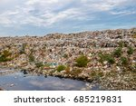 brid eat food on a garbage dump ... | Shutterstock . vector #685219831