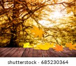 background of backyard in autumn | Shutterstock . vector #685230364