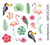 watercolor illustrations of a... | Shutterstock . vector #685251205