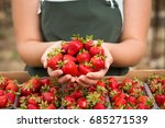 strawberry growers engineer... | Shutterstock . vector #685271539