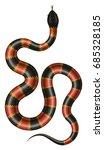 coral snake vector illustration.... | Shutterstock .eps vector #685328185
