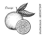 ink sketch of orange. isolated...   Shutterstock .eps vector #685347349
