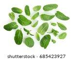 fresh lemon balm leaves on... | Shutterstock . vector #685423927