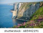 bempton cliffs is a nature... | Shutterstock . vector #685442191