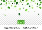 flying green summer leaves...   Shutterstock .eps vector #685464607