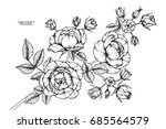 rose flowers by hand drawing... | Shutterstock .eps vector #685564579