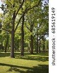 linden alley in ostafyevo park... | Shutterstock . vector #685619149
