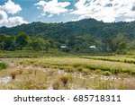 palawan  philippines   december ... | Shutterstock . vector #685718311