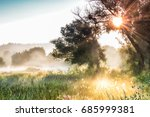 the rays of sun through a fog... | Shutterstock . vector #685999381