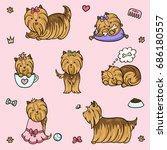 cartoon character yorkshire... | Shutterstock .eps vector #686180557