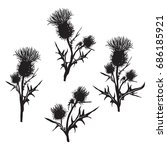 Decorative Vector Thistle ...