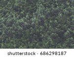 minimalist coniferous nordic... | Shutterstock . vector #686298187