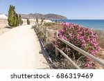 hiking trail at the... | Shutterstock . vector #686319469