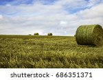 Hay Bales Isolated On The...